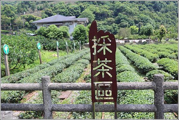 內山茶驛站 (4)