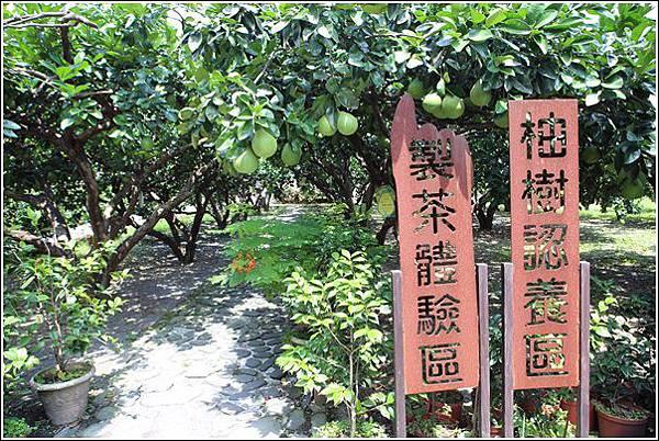 內山茶驛站 (23)