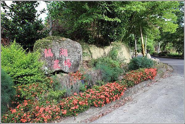仙湖農場 (2)