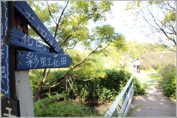 青林農場 (24)