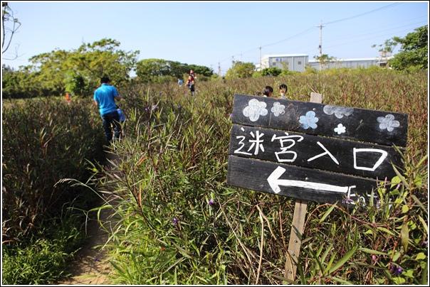 青林農場 (25)