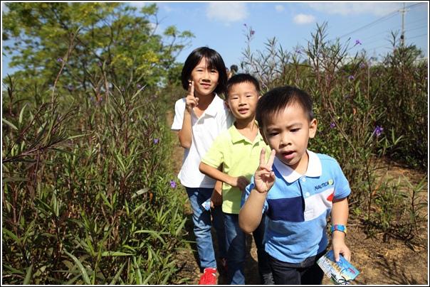 青林農場 (30)