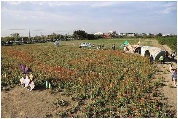 義竹玉米迷宮 (9)