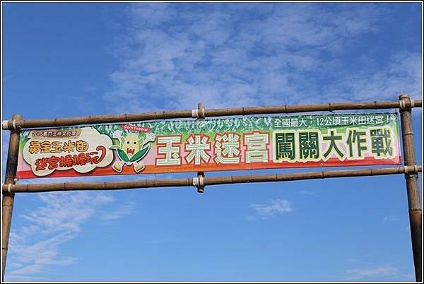 義竹玉米迷宮 (12)