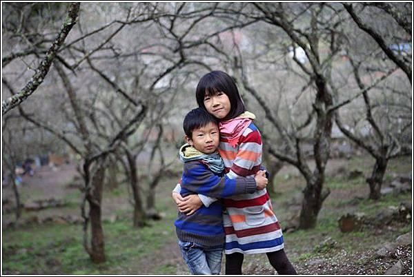 國姓賞梅 (40)