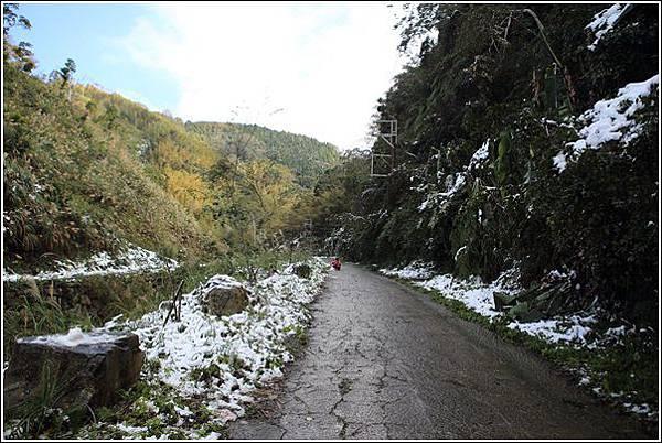 尖石賞雪 (6)