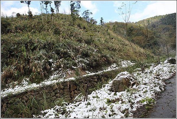 尖石賞雪 (10)