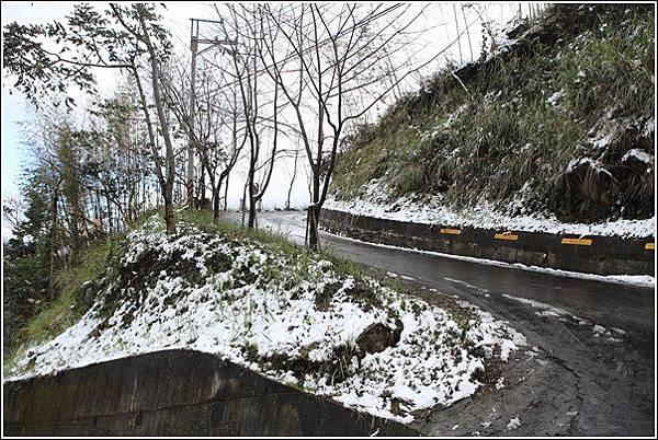 尖石賞雪 (12)