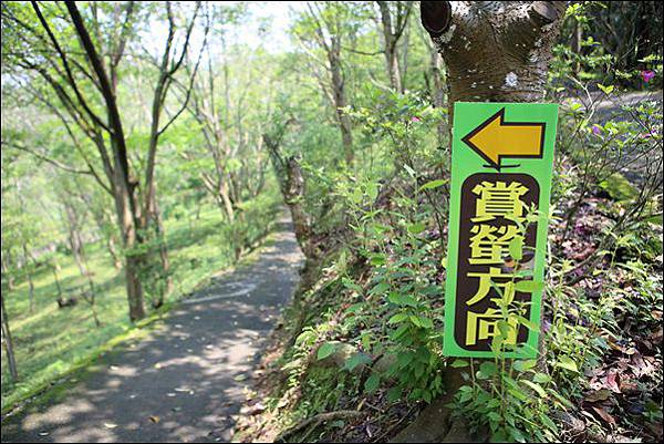 東勢林場 (34)