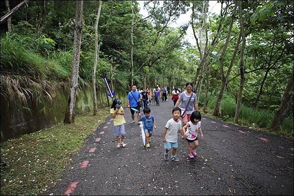 藤山步道 (5)
