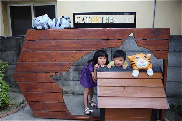 貓咪小學堂 (6)