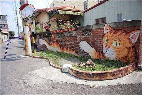 貓咪小學堂 (13)