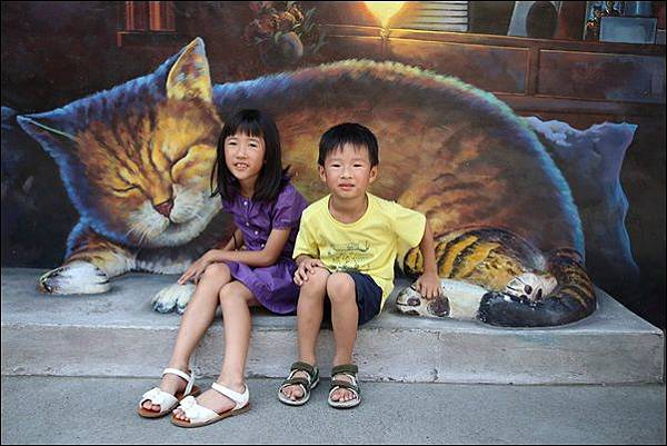 貓咪小學堂 (33)