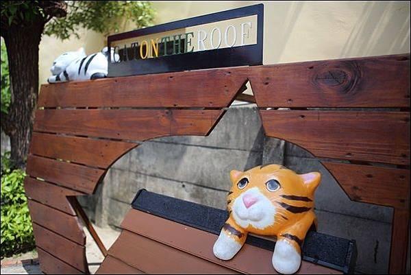 貓咪小學堂 (38)
