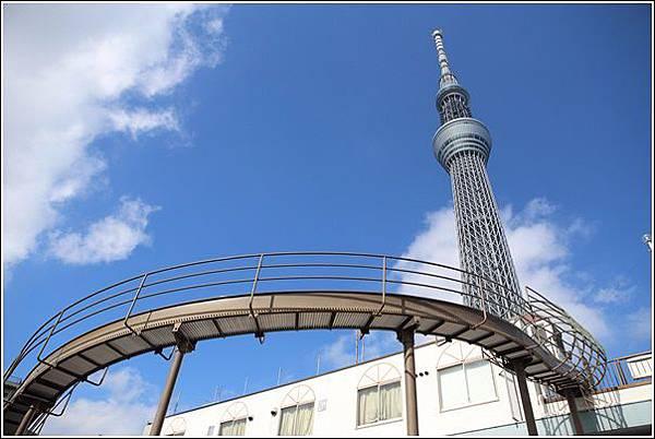 大橫川親水公園 (7)