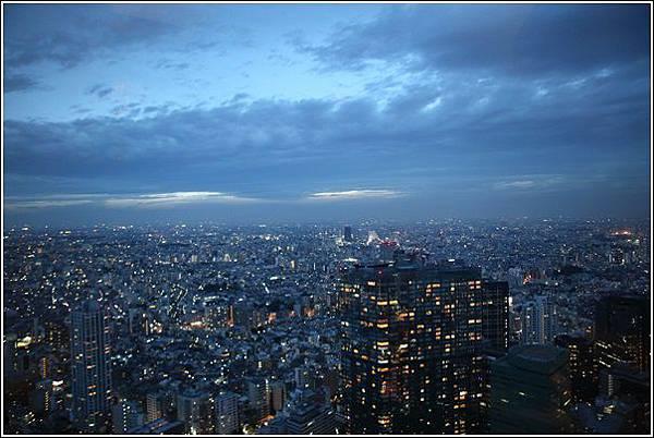 新宿都廳夜景 (1)