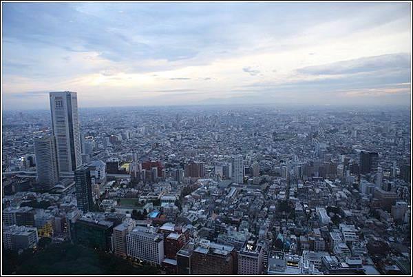新宿都廳夜景 (7)