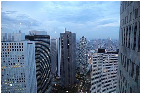 新宿都廳夜景 (9)