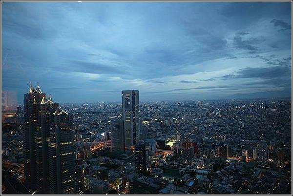 新宿都廳夜景 (12)