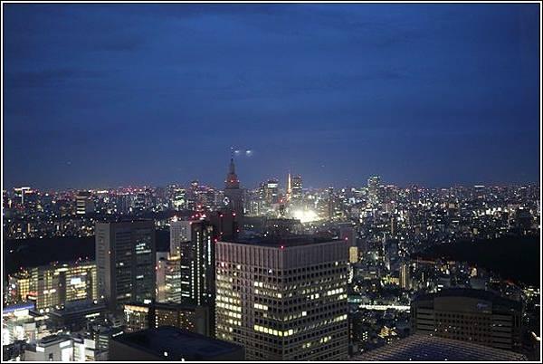 新宿都廳夜景 (13)