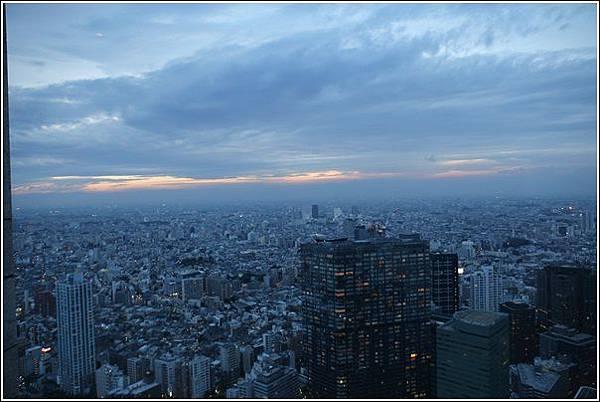 新宿都廳夜景 (15)