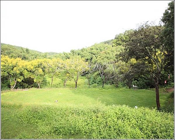 藍天綠地露營區 (50)