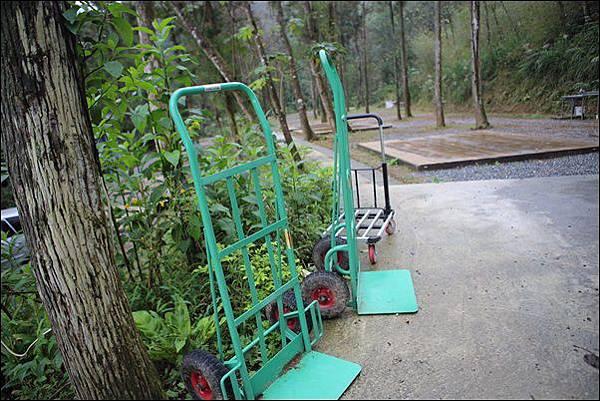 十分自然露營區 (31)