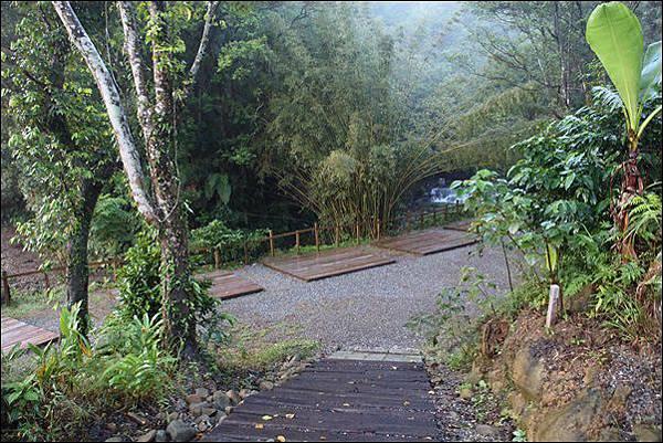 十分自然露營區 (34)