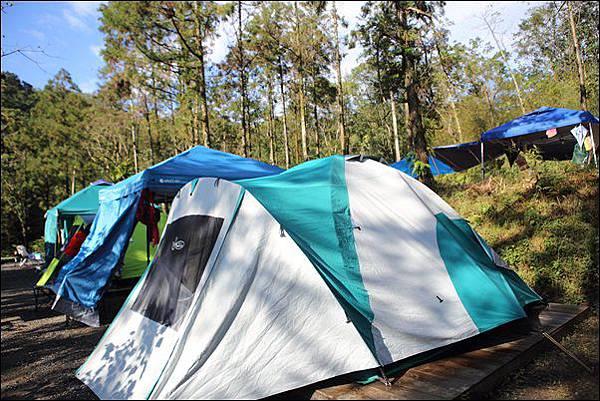 十分自然露營區 (50)