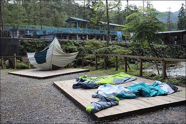 十分自然露營區 (60)