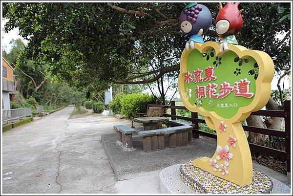 水流東桐花步道 (2)