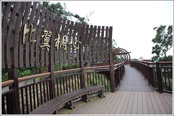 水流東桐花步道 (10)
