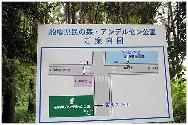 愛徒生公園 (9)