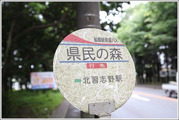 愛徒生公園 (11)