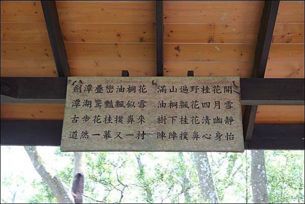 劍潭古道 (13)
