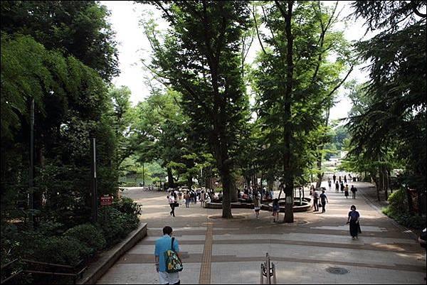 井之頭恩賜公園 (1)