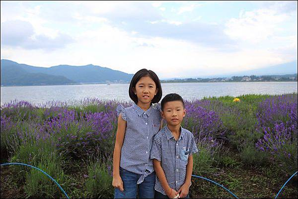 河口湖自然生活館 (28)