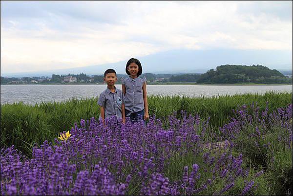 河口湖自然生活館 (30)