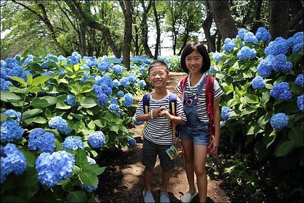 八木崎公園 (5)