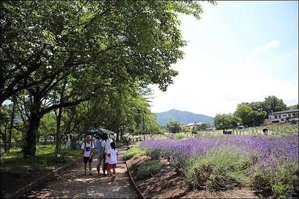 八木崎公園 (10)