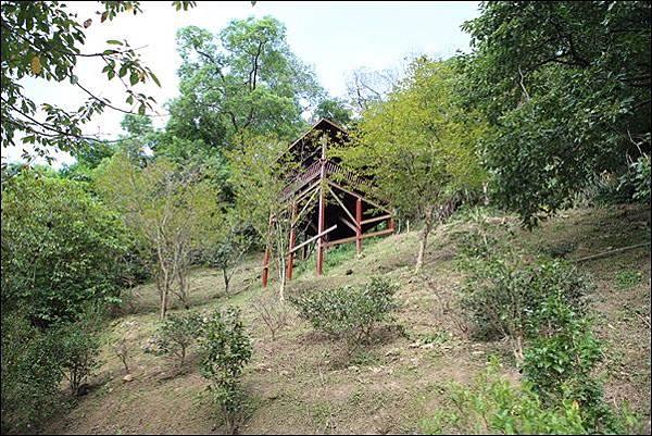 野漾露營區 (58)