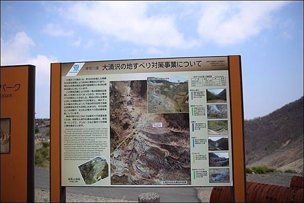 箱根空中纜車 (24)