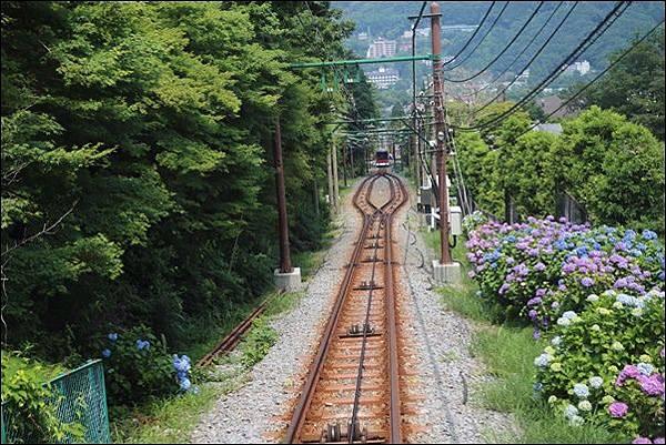 箱根登山纜車 (4)