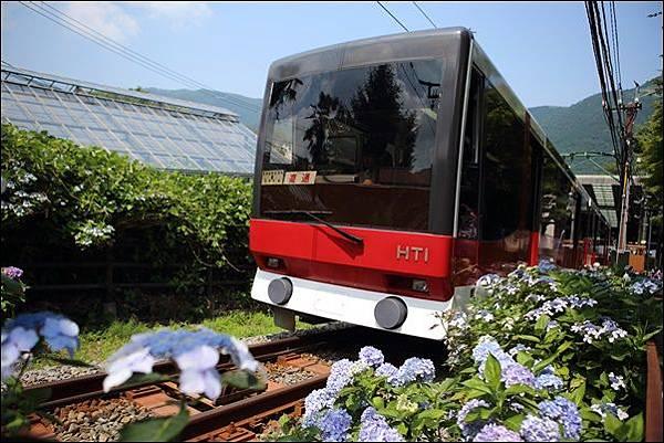 箱根登山纜車 (5)