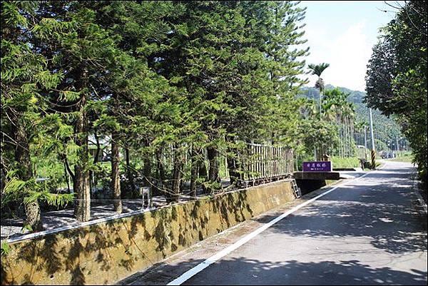 日月松林露營區 (4).jpg
