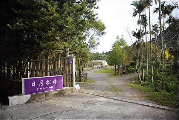 日月松林露營區 (5).jpg