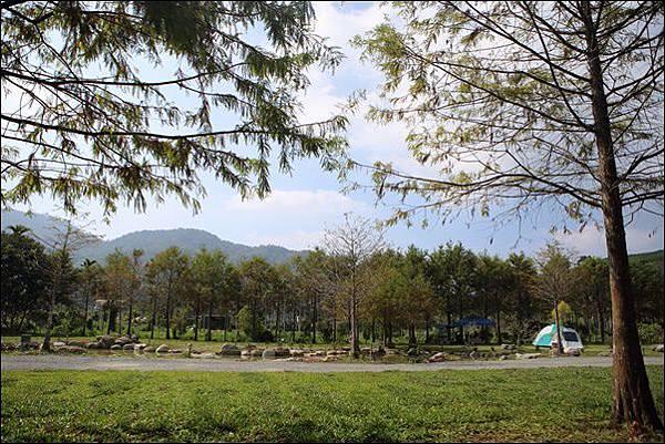 日月松林露營區 (71).jpg