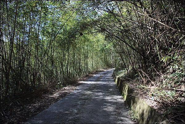 古道秘境露營區 (4).jpg