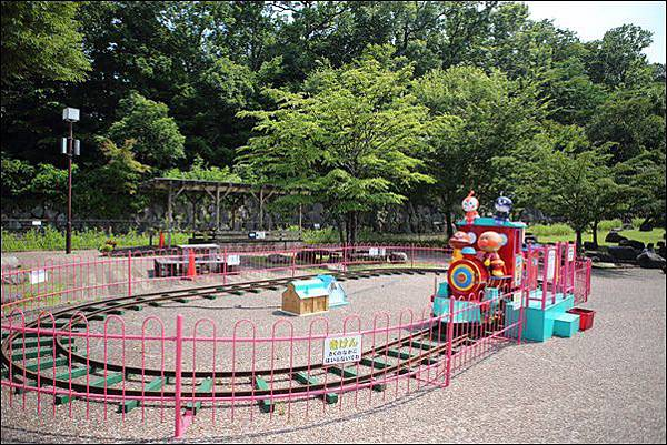 小田原こどもの森公園 (11).jpg