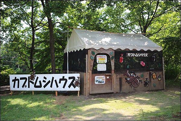 小田原こどもの森公園 (15).jpg